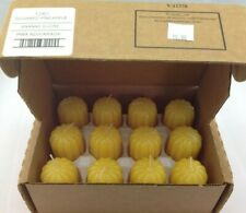 Home Interiors 12301 Votive Candle 12 Pack Sugared Pineapple Scented
