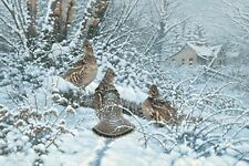Michael Sieve Signed and Numbered Ruffed Grouse print Hunkered Down