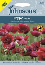 Johnsons - Flower - Poppy Pandora - 500 Seeds