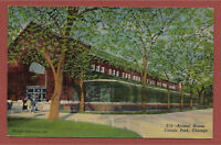 Animal House Lincoln Park Chicago Illinois IL linen postcard