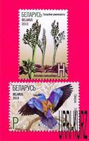 BELARUS 2013 Nature Flora Plants Fern Fauna Birds Roller Red Book 2v Sc846-847
