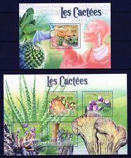 REPUBLIQUE CENTRAFRICAIN 2011 LES CACTEES CACTI FLOWERS BLUME FLORA FLEUR MNH**
