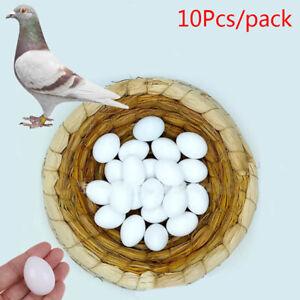 10Pcs White Solid Plastic Solid Pigeon Eggs Dummy Fake Eggs Hatching Suppl JdPT