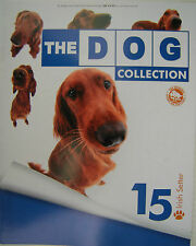 THE DOG COLLECTION - question N°15, setter irlandais, MAGAZINE