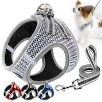 Kleine Hundegeschirr Mit Leine Atmungsaktives Netz Welpen Weste Reflektierend