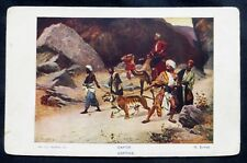 "Old Foreign Post Card:  ""CAPTIVE"" Tiger , Camels , Men: (20 cent Stake Back)2032"