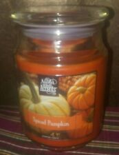 """Nicole's Home Accents """"Spiced Pumpkin"""" 18 oz Large Jar Soy Blend Candle, BN"""