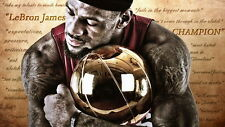 "50 LeBron James Miami Heat 2012 NBA Champion MVP 25""x14"" Poster"