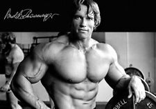 ARNOLD SCHWARZENEGGER PUMPING IRON - A3 GLOSS PHOTO POSTERS - ALL 3 + FREE POST