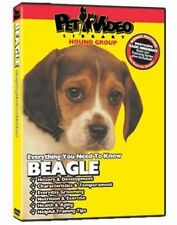 Beagle DVD: Everything You need to Know  Dog & Puppy Training Bonus included