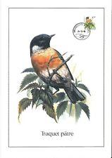 FDC 2397 - Oiseau Buzin sur gravure format A4 !