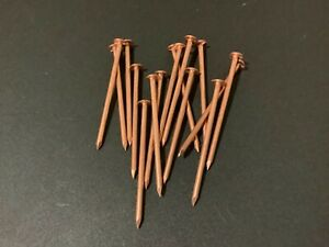 Lot of 15 New Copper 3 Inch Nails for Killing Trees, Stumps