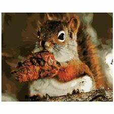 Squirrels Oil Painting By Numbers Acrylic Canvas Abstract Wall Art Garden Decors