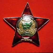 RUSSIA MILITARY VETERAN PIN AFGHANISTAN WAR EMBLEM SOVIET RED STAR SOLDIER BADGE