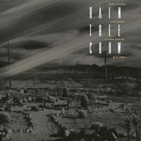 David Sylvian - Rain Tree Crow - New 180g Vinyl LP + MP3 - Pre Order - 29th Mar