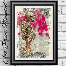 ART PRINT ON ANTIQUE DICTIONARY PAGE MOUNTED Anatomical Skeleton Gothic Wall Art