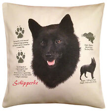 Schipperke History Cotton Cushion Cover - Cream or White Cover - Gift Item