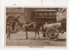 Camel Water Cart Aden Vintage RP Postcard 912a