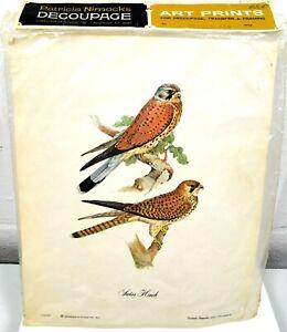 Vintage Patricia Nimocks Decoupage Art Print Swiss Hawk Framing