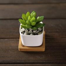 Mini Ceramic Succulent Planter Flower Pot White Porcelain Pot Plant Garden Decor