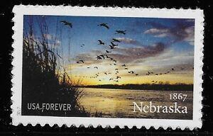 US Scott #5179, Single 2017 Nebraska VF MNH