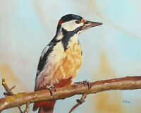 Original Artwork oil painting Woodpecker on stretch canvas, wildlife 16''x20""