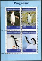 Madagascar 2019 MNH Penguins Gentoo King Macaroni Penguin 4v M/S Birds Stamps