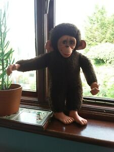 Vintage jacko monkey, low maintenance family pet?