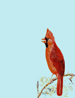 """perfect 24x36 oil painting handpainted on canvas """" a lovely bird """"@N4494"""