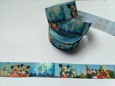 Ruban Multicolore gros grain Disneyland 25 mm , vendu au mètre , Ribbon .