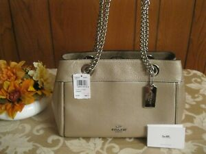 NWT Coach F39019 Platinum Leather Brooke Silver Chain Carryall Shoulder Bag