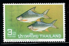 Thailand  1967  1st Thai Fishes  3 Baht    MNH   Stamp