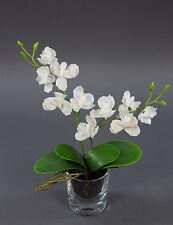 Orchidee in Glasvase 30cm weiß GA Kunstblumen künstliche Blumen Orchideen