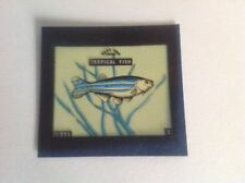 VINTAGE BLUE CAP CHEESE FLIXIES (TRANSPARENCY) TRADE CARD FISH SERIES ZEBRA FISH