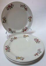 3 Dunn Bennett Co Floral Plates Vitrified Hotel Ware England Royal Doulton Group