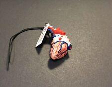 Kitan Club Science Techni Colour Human Body Miniature Heart Model A Strap Figure