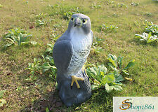 FALCON PEST DETERRENT GARDEN LAWN POND  BIRD CAT SCARER DECOY  DECORATIVE HAWK