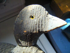 Animal Trap Victor Duck Decoy Factory Bird Duck decoy Glass eyes Factory Mark