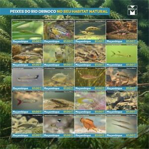 Mozambique 2021 Fishes of the Orinoco in the Wild. (108a)
