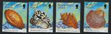 BRITISH VIRGIN ISLANDS:1999 Sea Shells-with imprint date SG1028-31B MNH