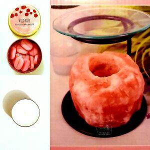 Himalayan Salt Oil Burner Wild Rose Soy Wax Melt Tea Light Starter Gift Set Box