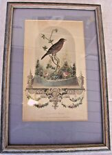 THE PET BIRD Print Matted & Framed Vintage 1800's Godey's Lady's Book Plate RARE