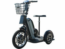 Mototec Electric Trike 48v 800w Sit/Stand -Mt-Trk-800 -Certified for California