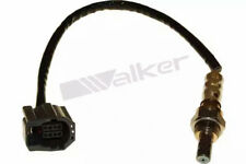 Lambdasonde Walker Products 250-24795