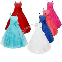 Flower Girls Kid Princess Bridesmaid Wedding Birthday Party Tutu Ball Gown Dress