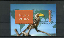 Gambia 2011 Mnh Aves De África 1v S/s me Africana Gris cálao