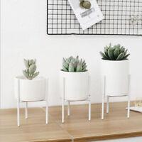 White Ceramic Flower Plant Succulent Pot & Gold Rack Display Stand Holder  !