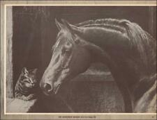 GODOLPHIN ARABIAN  a foundation sire of thoroughbred, George Ford Morris 1952