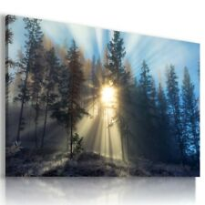 SUNRISE FOREST TREES SKY View Canvas Wall Art Picture  L597  MATAGA .