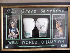 Danny Green Signed Boxing Glove(s) with C.O.A. in Box Frame - L/E #19 / #50